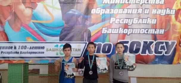 Первенство Министерства образования Республики Башкортостан по боксу