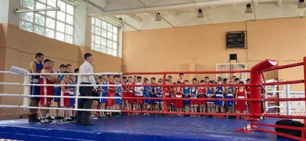 Новые успехи наших боксеров
